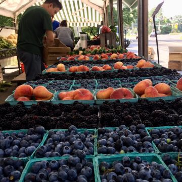 Blueberries in pints with other fruit at Norman's Farm Market.